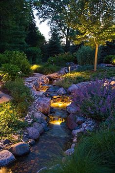 Lighted backyard landscape