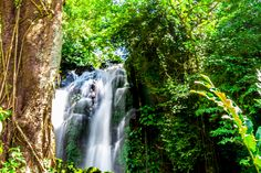 Twin Falls, near Maa-o and Buenos Aires on Negros Occidental in the Philippines. Bacolod City, Twin Falls, Some Pictures, Philippines, Waterfall, Travel, Outdoor, Buenos Aires, Black