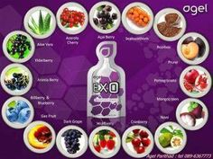 200 antioxidants into one pack Agel EXO