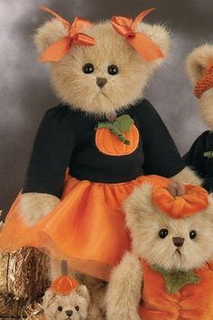 "Bearington Bear ""Penny Pumpkinpatch"" Fall Holiday Bear by Bearington, http://www.amazon.com/dp/B0091W23NU/ref=cm_sw_r_pi_dp_Gqosrb1SS1EXF"