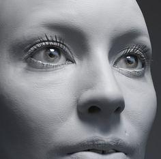 lacrimal caruncle - Google 검색
