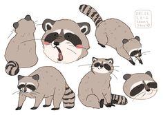 hamotzi: raccoons!!
