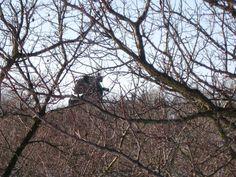 26.1.2015 větrný mlýn