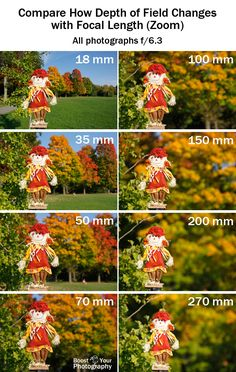 Depth of Field: it's more than just aperture - compare how DOF changes with focal length | Boost Your Photography