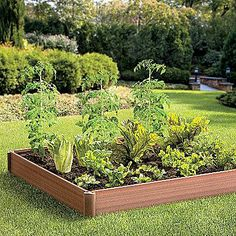 Easier to work and maintain than a conventional bed, a raised garden allows you to plant vegetables or flowers closer together, producing higher yields. Raised gardens also tend to drain excess moisture away more effectively.