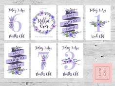 Baby Milestone Cards Printable Lavender Floral by PSXODesign