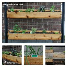"""I am SO excited to share this post today! You've probably read garden books or seen episodes of home improvement or gardening shows where they create a """"ktichen garden"""" filled with glorious herbs right outside the back door so that you can clip a sprig of Rosemary for the chicken or mint to add to the lemonade. It's that perfect garden that lives, primarily, in our imaginations. I doubt there is a gardener, cook or everyday homeowner who doesn't dream of having a full contingent of fresh…"""
