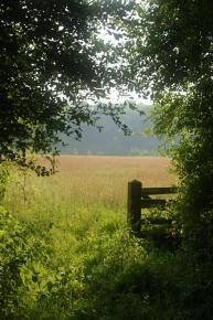 Secret meadows  http://local.mumsnet.com/suffolk/caravan-and-camp-sites/141880-secret-meadows