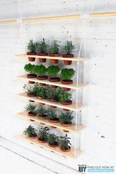 Vertiaal tuinieren? Je zet je plantjes simpelweg in houten plankjes die met touwen aan elkaar zijn verbonden!