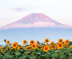 by Shinichiro Saka  Mount Fuji, Japan