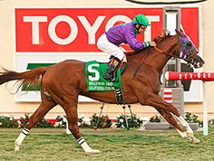 California Chrome, the national Horse of the Year for 2014, has added two more titles -- champion 3-year-old California-bred male and champion Cal-bred turf horse.