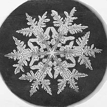 In 1885, nineteen-year-old Wilson A. Bentley took his first successful photomicrograph of a snow crystal. He went on to capture over 5000 such images before he died on Dec. 23, 1931, after walking six miles in a blizzard.