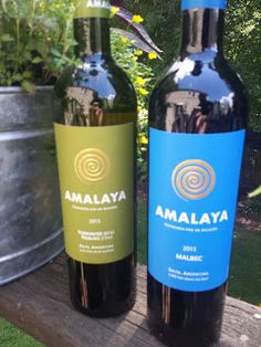"WineCompass: ""Wines of Altitude"" with Salta's Amalaya Wines"