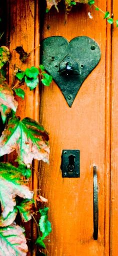 Rust Color, Green And Orange, Bottle Opener, Bird, Outdoor Decor, Gardens, Inspiration, Cottage, Painting