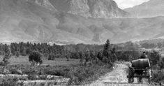 For more than a decade the railway line remained dormant until it was returned to full-time service in 2012 as the Franschhoek Wine Tram.
