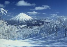 Hokkaido Niseko, Japan - beautiful powder snow heaven