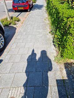 Nadat ik ruim 500 woorden heb geschreven selecteerde ik zojuist alles en duwde ik op delete. Het was een opsomming van redenen waarom ik nauwelijks heb geschreven. Maar liever leg ik de nadruk op de mooiste momenten van de afgelopen tijd! En die deel ik met behulp van 30 foto's!… Het bericht De mooiste momenten van afgelopen tijd in 30 foto's verscheen eerst op Bij Zus. Sidewalk, Blogging, Side Walkway, Walkway, Walkways, Pavement