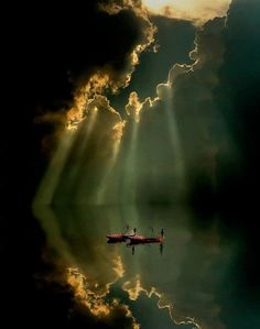 Amazing Snaps: Stunning Portrait of a Reflection !!!! | See more