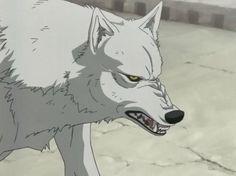 wolf's rain  kiba | Wolf's Rain Kiba