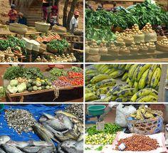 Bei Anstirabe liegt das Hauptgebiet für den Gemüseanbau