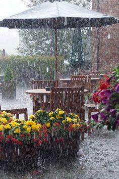 Ideas Photography Nature Rain Rainy Days For 2019 Walking In The Rain, Singing In The Rain, Smell Of Rain, I Love Rain, Rain Go Away, Rain Days, Parasols, Umbrellas, Rain Photography