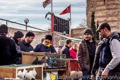 Geriatric Gapper: Edirnekapı Bird Market, Istanbul