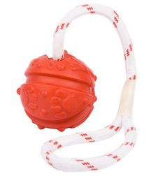 Play tug game and fight bad breath fun #dog #ball on string - $9.89 | www.fordogtrainers.com