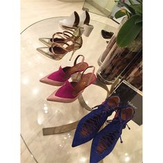 Malone Souliers on @alfashionista's Instagram.  I LOVE pointed shoes  Malone Souliers  Malone Souliers' elaphe in two shades of gold 'Veronica' D'Orsay pumps, blush elaphe, fuchsia suede 'Kira' slingbacks, ultraviolet suede, nappa, fuchsia suede 'Montana' lace-up pumps.   #MaloneSouliers #Alfashionista #BySymphony #DubaiMall #Veronica #Montana #pumps #Kira #slingbacks #SS15 #luxury #womens #shoes #fashion