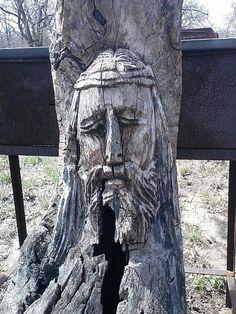 Indian Springs tree carving