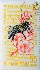 Honey Bee Stamp would make a beautiful print for a kitchen