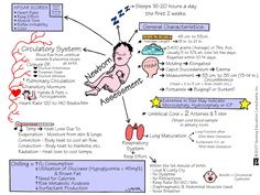 newborn mnemonics | ... neonate newborn mnemonic memory notebook nursing school student nurse