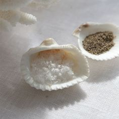Use natural scallop shells as a salt and pepper cellar.