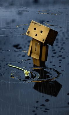 danbo in the rain Becoming A Father, You Are The Father, Rain And Thunderstorms, Rain Wallpapers, Joker Wallpapers, 8k Wallpaper, Amazon Wallpaper, Amazon Box, Rain Quotes