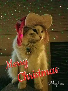 "mayhem wishes everyone  ""Merry Christmas"""