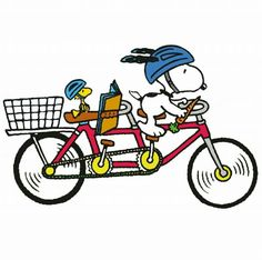 Snoopy and Woodstock Riding a Bicycle Built For Two Wearing Helmets and With a Basket on the Back Snoopy Love, Charlie Brown And Snoopy, Snoopy And Woodstock, Peanuts Cartoon, Peanuts Snoopy, Peanuts Comics, Kermit, Bicycle Pictures, Minions