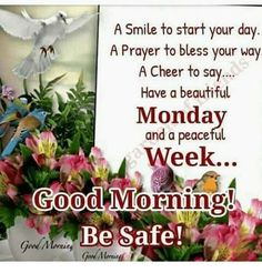 A Smile to Start Your Day a Prayer to Bless Your Way a Cheer to Say Have a Beautiful Monda and a Peaceful Week 000 Morning Be Safe! Monday Morning Greetings, Monday Morning Blessing, Good Morning Happy Monday, Good Morning Prayer, Good Morning Texts, Good Morning Love, Good Morning Friends, Good Morning Messages, Good Morning Wishes