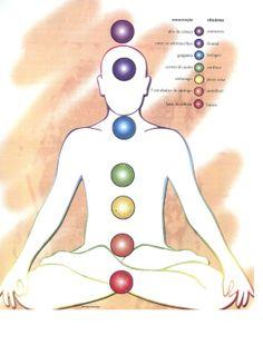 """""""A palavra Chacra é sânscrita e significa roda.  Os chacras principais trabalhados pelo Reiki são 07 e estão localizados da base da coluna até o topo da cabeça, como na figura. Cada chacra tem uma cor que o define também. Os chacras são responsáveis pelo fluxo energético no corpo humano e sua função principal é absorver o prana (energia proveniente do Sol), metabolizá-lo, alimentar a aura e o ser humano energeticamente e espiritualmente e emitir energia ao exterior."""""""