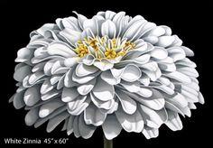 Michael Kuseske - floral art