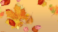 FCPX Generator: Leaves - Fall. Plug-ins. $6.00