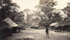 Huts in a Congolese village.  Irebou, Middle Congo. August 1906.  Pitt Rivers Museum 1994.62.367.11