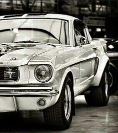 ..Mustang