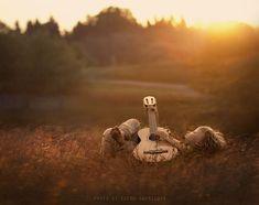 noche de verano .. por Elena Shumilova, a través de 500px #guitarphotography