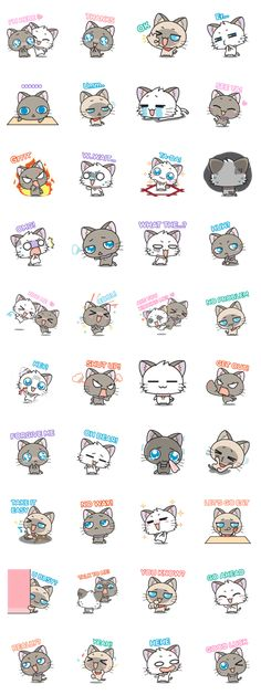 """""""Hoshi & Luna Diary"""" the 5th series. All cat lovers don't miss. Send it to your friends now!."""