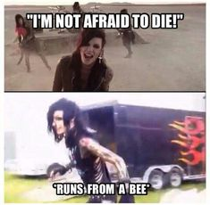 Andy Biersack, ladies and gentlemen. Emo Band Memes, Emo Bands, Music Bands, Emo Meme, Andy Biersack, Andy Black, Bvb Fan, Black Veil Brides Andy, Band Quotes