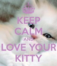 KEEP CALM AND LOVE YOUR KITTY