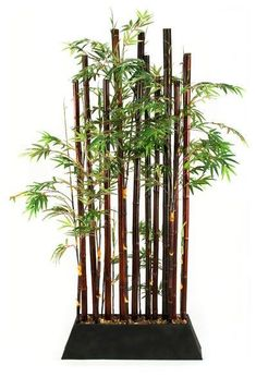 Bamboo Plant Divider by CORT -- Great as a room divider in a small apartment! | CORT.com