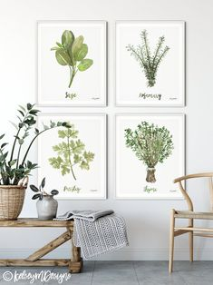 Herbs Set of 4 Watercolor Painting, Kitchen Prints, Sage Thyme Rosemary Parsley, Gallery Wall Set, K Kitchen Prints, Kitchen Art, Kitchen Decor, Kitchen Ideas, Herb Art, Farmhouse Wall Decor, Watercolor Paintings, Watercolor Print, Watercolor Cards