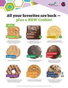 Selling Girl Scout Cookies, Girl Scout Cookies Flavors, Girl Scout Cookie Sales, Cookie Flavors, Buy Girl Scout Cookies, Cookie Recipes, Abc Cookies, Graham Cookies, Easter Cookies