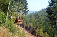 From pimped-out pads to primitive shelters, these West Coast treehouses have all the rustic style and whimsical charm…