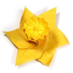 Origami daffodils and lots of others - instructions @ bloom4ever.com/flower-origami-daffodil.php